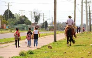 Equinos precisam ter vacinação em dia para o desfile